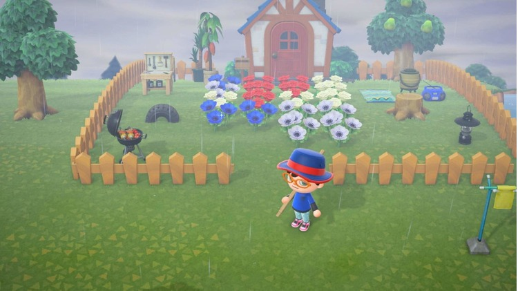 animal-crossing-new-horizons-what-to-do-each-day.jpg
