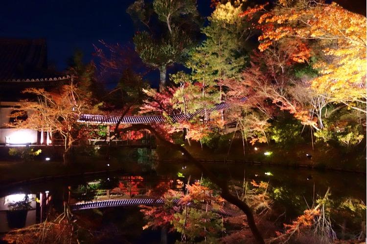 京都枫叶-高台寺A.jpg