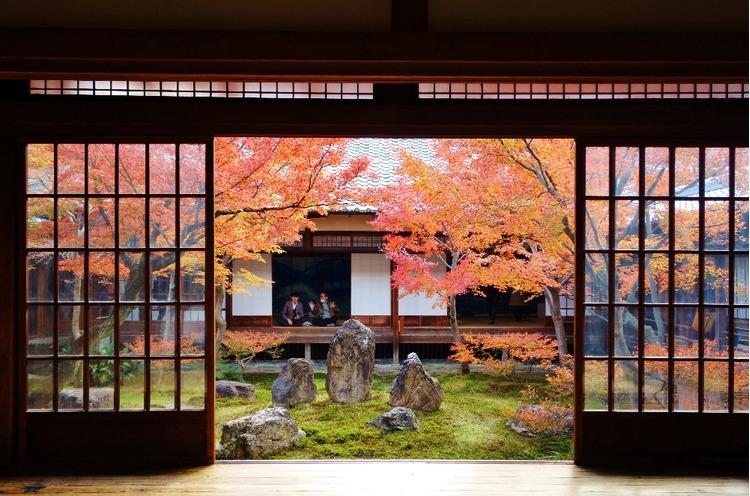 京都枫叶-建仁寺A.jpg