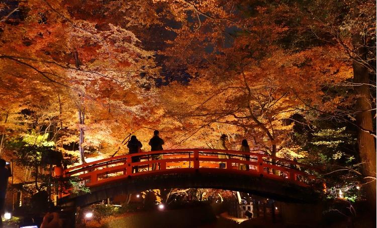 京都枫叶-北野天满宫A.jpg