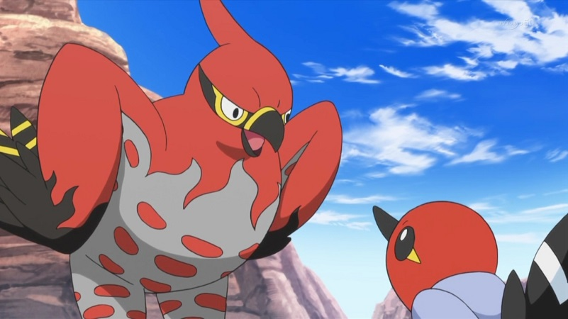 talonflame-pokemon-anime