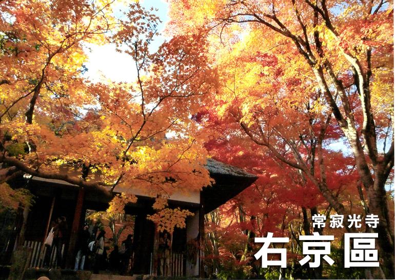1.kyoto-右京区21