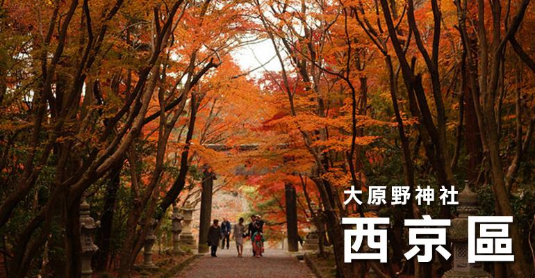 11kyoto西京区