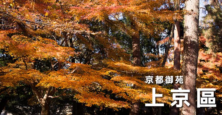 4kyoto上京区